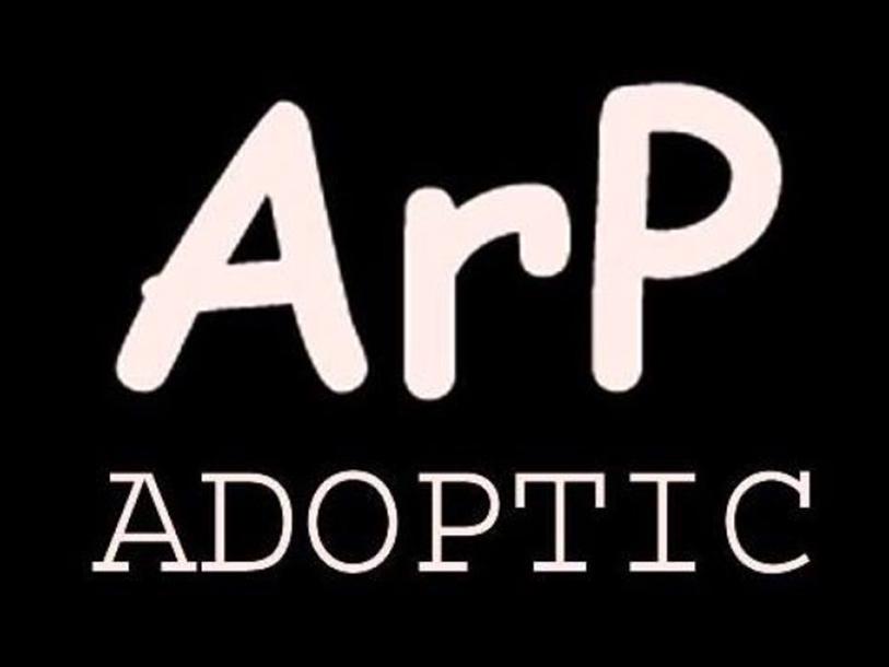 ArP Adoptic
